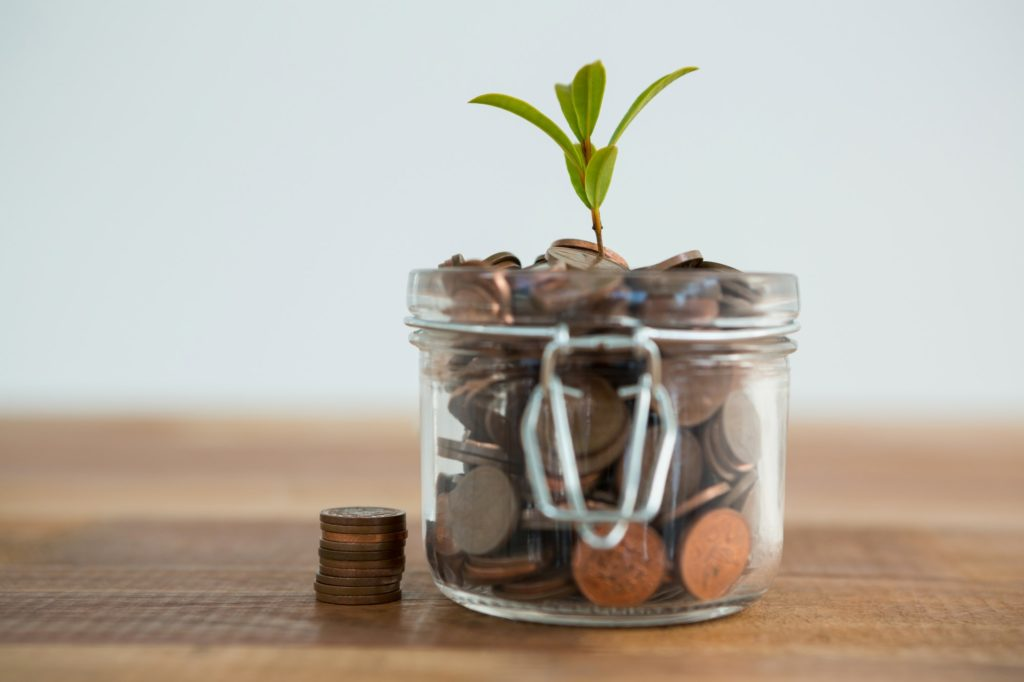 Plant growing out of coins jar